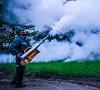 Acțiune de dezinsecție împotriva țânțarilor, 30-31 mai